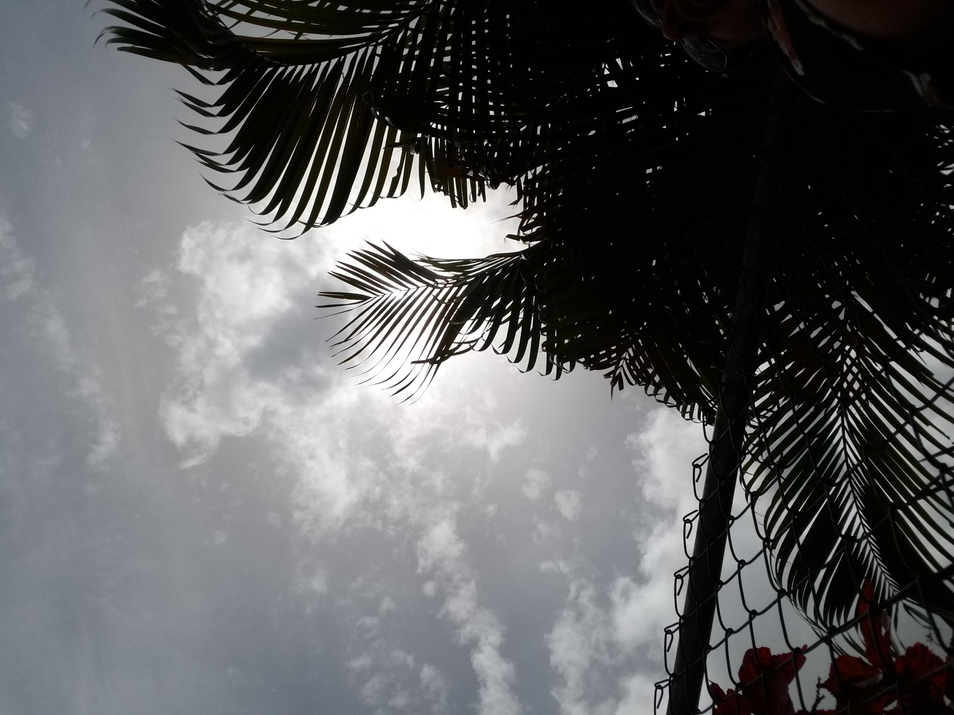 Cielo, Vega Baja